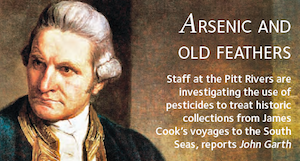 Arsenic and old feathers